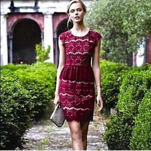 Anthropologie Wine Peplum Lace Dress